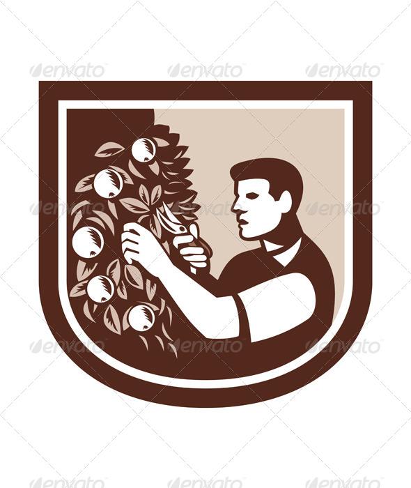 GraphicRiver Grower Orchardist Gardener Pruning Tree 7691651