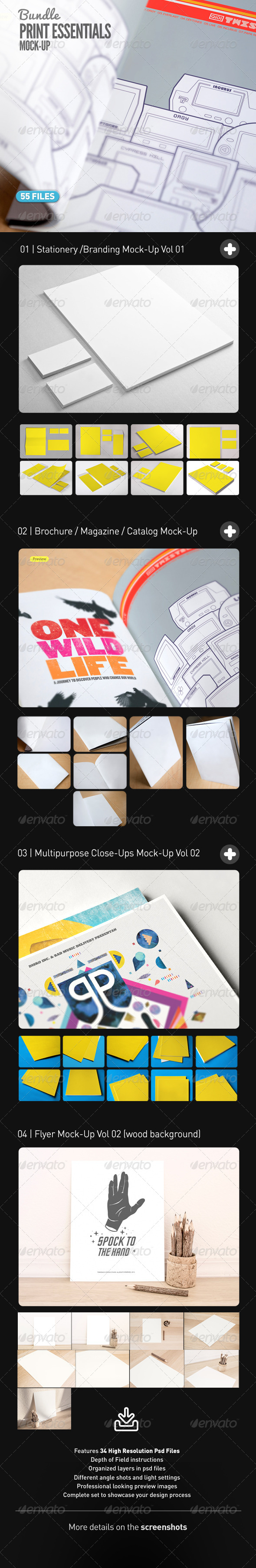 GraphicRiver Stationery Flyer Magazine Poster Close Up Bundle 7696675