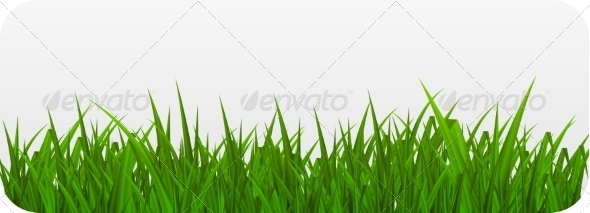 GraphicRiver Summer Abstract Background with Grass 7697715