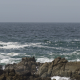 Powerful Waves 5