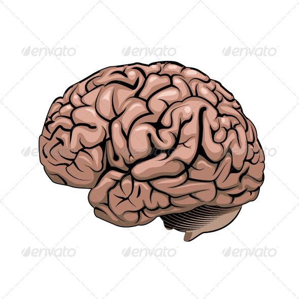 GraphicRiver Brain 7602388