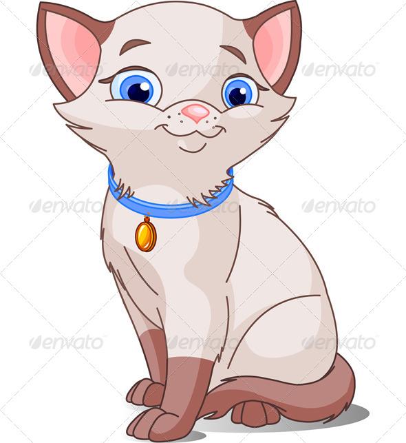 GraphicRiver Siamese Cat 7707719