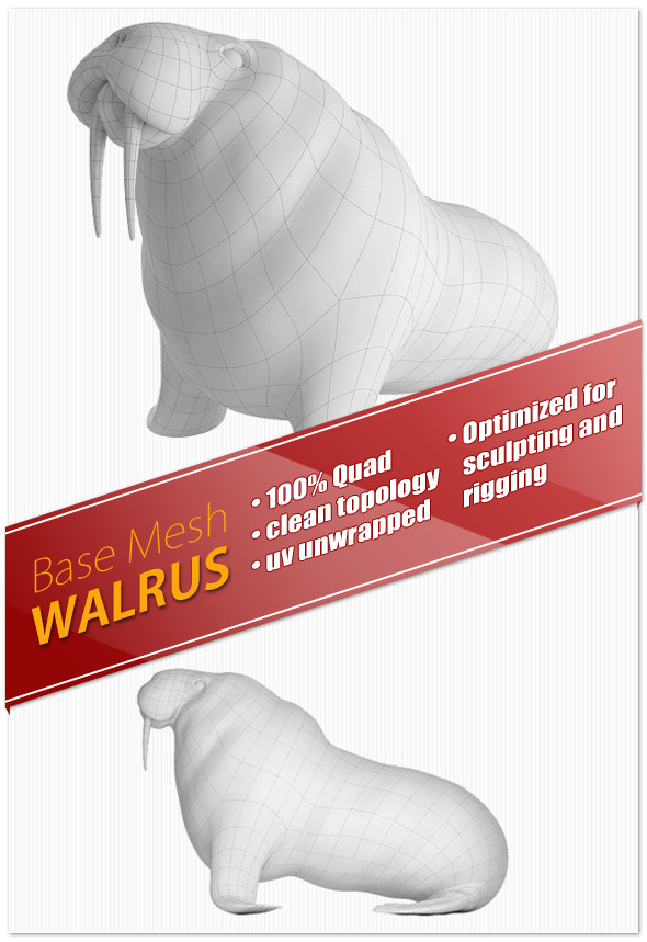 Walrus Base Mesh - 3DOcean Item for Sale