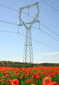Electricity pylon - PhotoDune Item for Sale