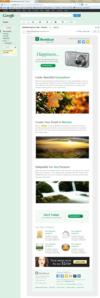 03_layout2_gmail_firefox.__thumbnail