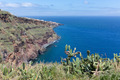 View at rocky coast of Madeira with cactuses - PhotoDune Item for Sale