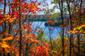Lake and fall forest - PhotoDune Item for Sale