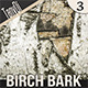 Birch Tree Bark - GraphicRiver Item for Sale