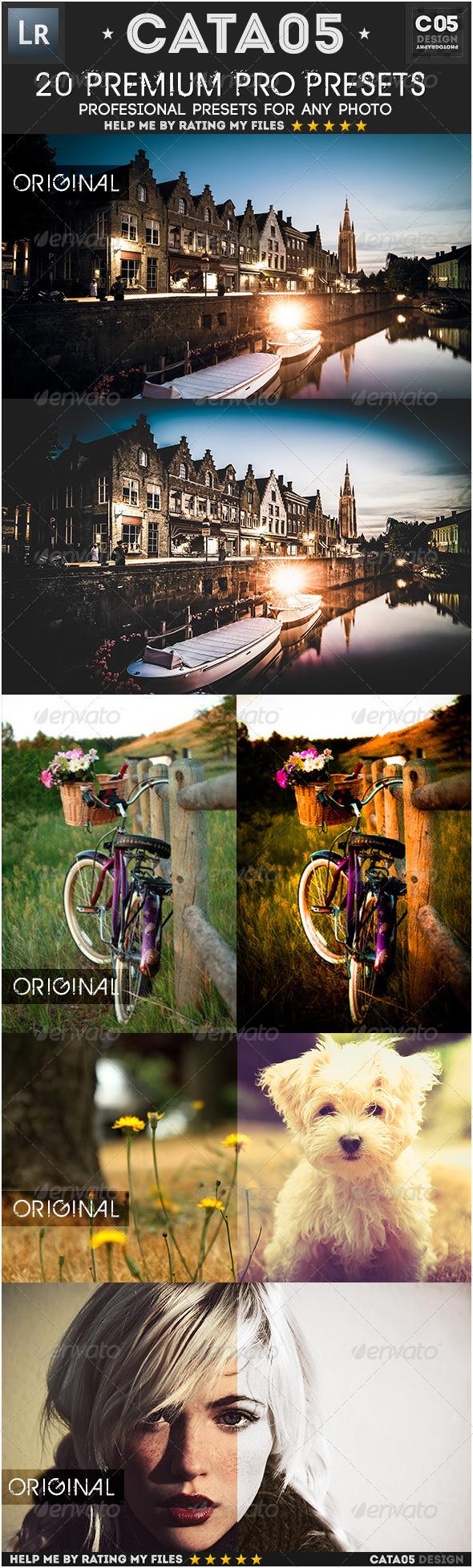 GraphicRiver 20 Premium Pro Presets 7731679