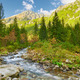 The Roztoka Stream in Tatra National Park. The High Tatras scenery, Carpathian Mountains. - PhotoDune Item for Sale