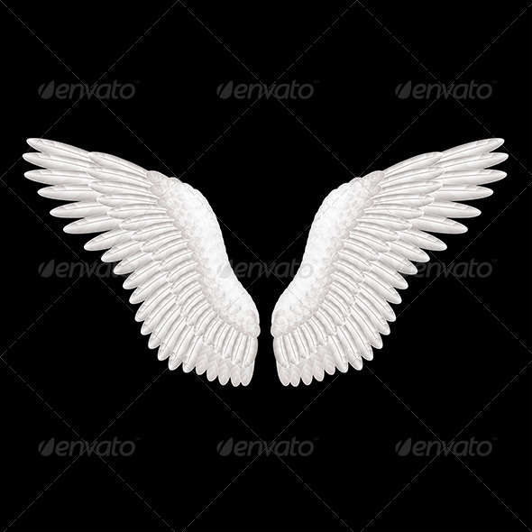 GraphicRiver Wings 7733682