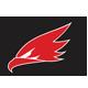 Hawk Sport Logo Template - GraphicRiver Item for Sale