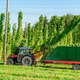 Harvesting Hop with a Truck - PhotoDune Item for Sale