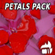Petals (4-Pack) - VideoHive Item for Sale
