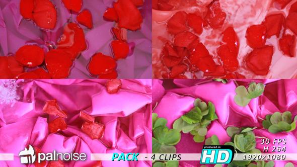 Petals 4-Pack