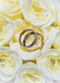 Close-up of wedding rings and roses