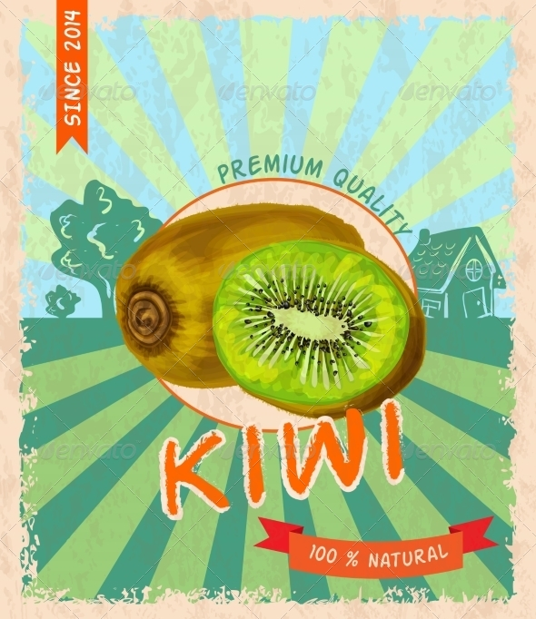 GraphicRiver Kiwi Retro Poster 7763458