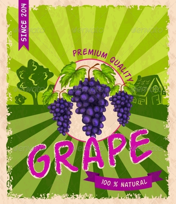GraphicRiver Grape Retro Poster 7763465