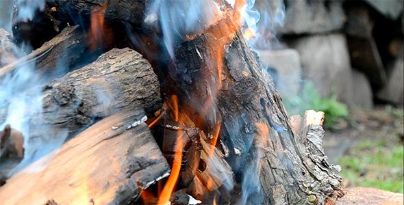 Bonfire 01