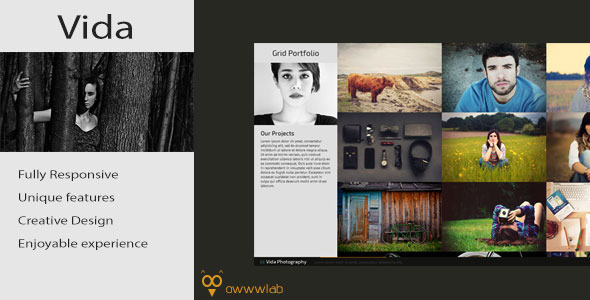 Vida - Responsive Creative Photography Template - Photography Creative