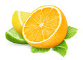 Pieces of citrus fruits - PhotoDune Item for Sale