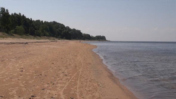 Summer Baltic Sea Shore