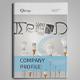 Company Profile Vol.1 - GraphicRiver Item for Sale