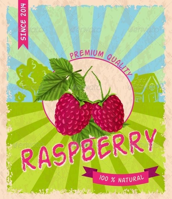 GraphicRiver Raspberry Retro Poster 7785413