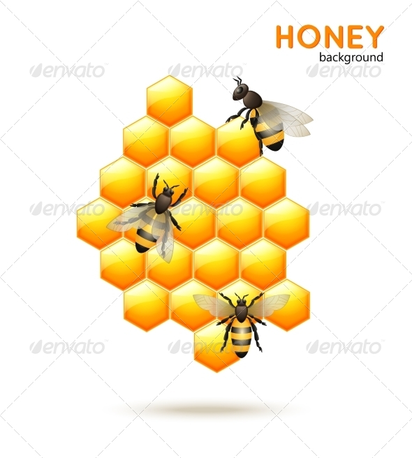 GraphicRiver Honey Bee Background 7785469