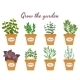 Set of Vector Herbs in Pots with Labels - GraphicRiver Item for Sale