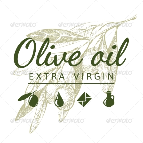 GraphicRiver Olive Branch with Logo 7796225