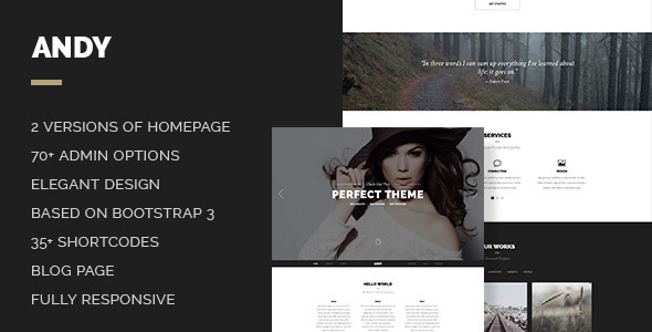 ThemeForest Andy Elegant Creative Minimal One Page Template 7746398