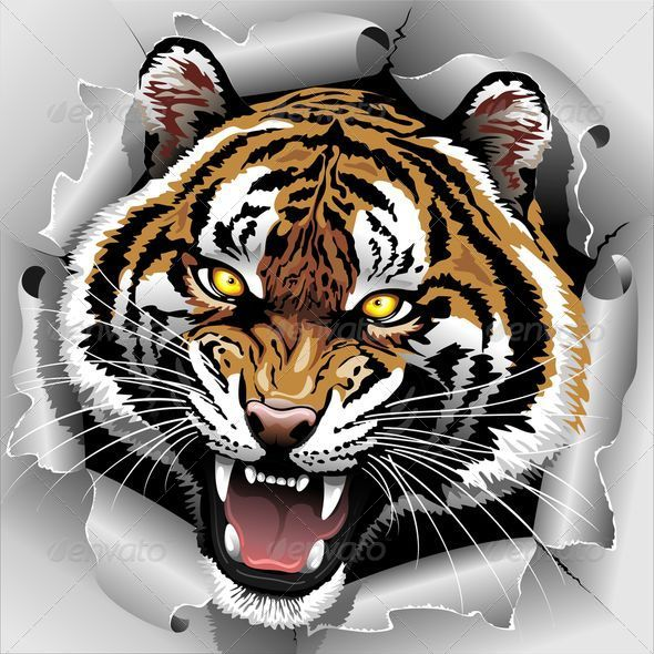 GraphicRiver Tiger Roar Coming Out from Torn Paper 7799160