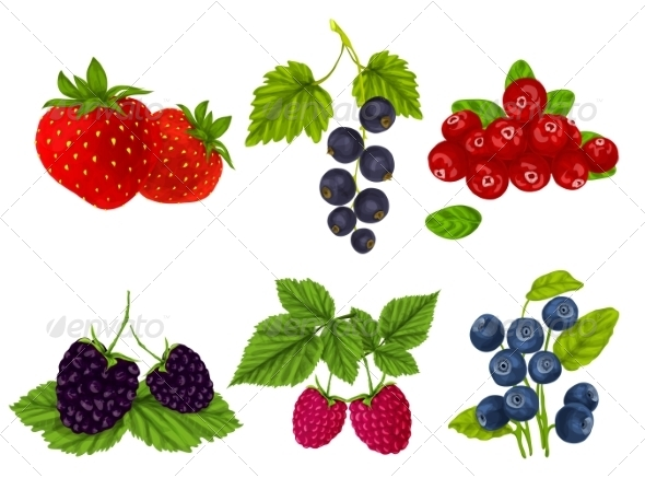 GraphicRiver Fresh Berries Set 7799325