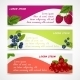 Berries Banners Set - GraphicRiver Item for Sale