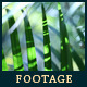 Green Leafs 20 - VideoHive Item for Sale