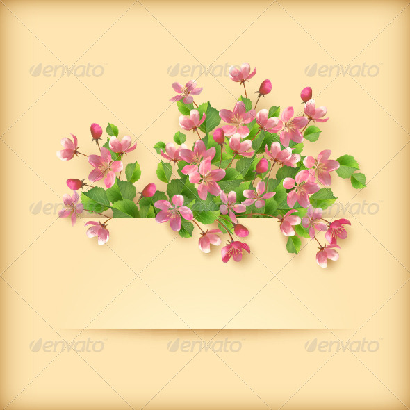 Pink Cherry Blossom Flowers Greeting Card