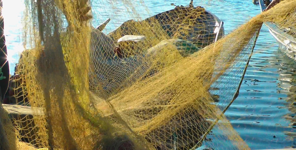 Fishermen Repairs Fishnets