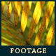 Green Leafs 21 - VideoHive Item for Sale