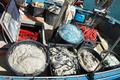 fishing net - PhotoDune Item for Sale
