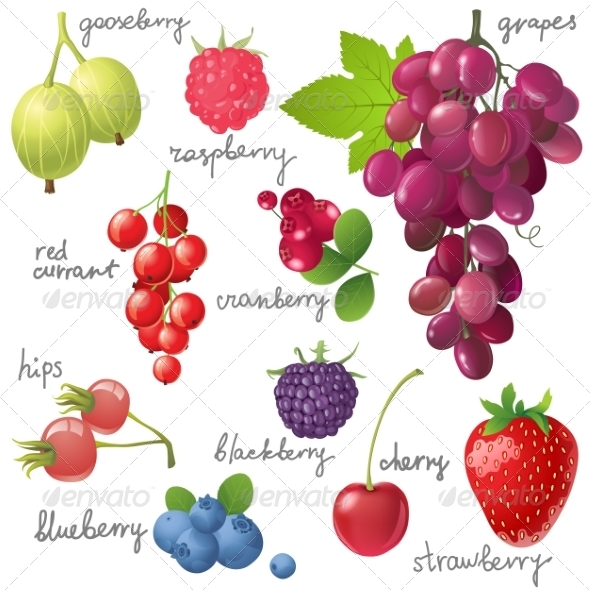 GraphicRiver Berries Set 7813459