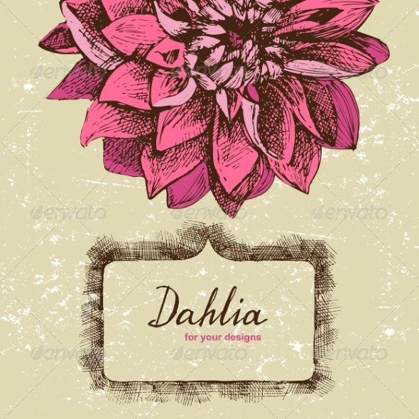 GraphicRiver Background with Hand Drawn Dahlia 7813559