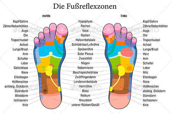 GraphicRiver Foot Reflexology Chart German Description 7814063