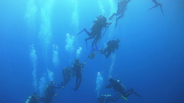 Group of Divers Preparing to Dive 668