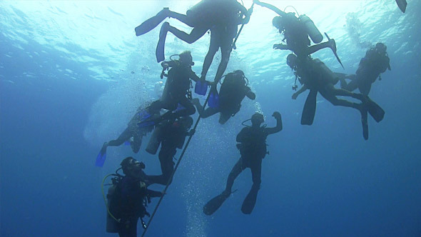 Group of Divers Preparing to Dive 669