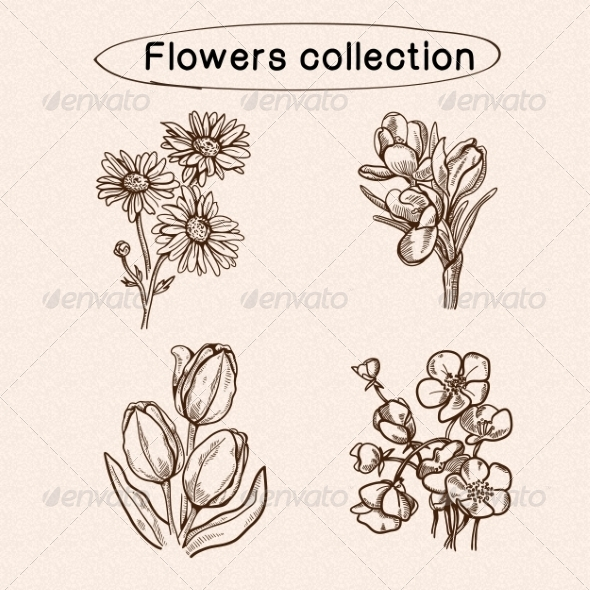 GraphicRiver Flowers Sketch Elements 7814781