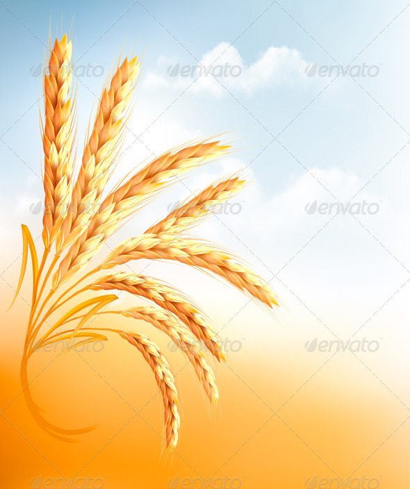 GraphicRiver Background with Ears of Wheat 7815522