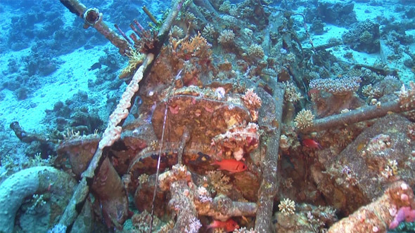 Shipwreck on the Seabed 717