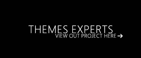 themesexpert