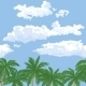 Palm Trees and Sky with Clouds